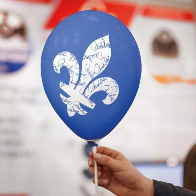 Ballons Fleurdelys (50)