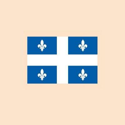 Tatouage drapeau (125)
